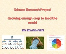 8nh research project
